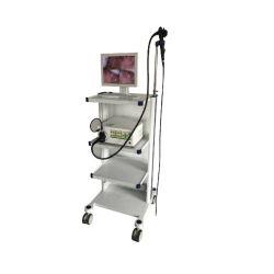 -9000humide de haute qualité d'un médecin vétérinaire de l'endoscope vidéo de petits animaux