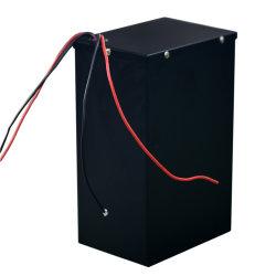 48V 40ah 1000W LiFePO4 리튬 폴리머 배터리 팩(전기 차량
