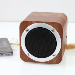 Mini haut-parleur Bluetooth téléphone sans fil du bois Sound Smart Radio pratique