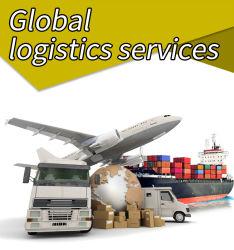 Dropshipping Verschiffen-Agens aus dritter QuelleDood Behälter Service Provider internationalen Luft Logistc in der Ladung-China-X Brasilien