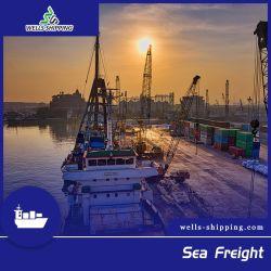 شحن الآبار البحرية شاحنة الشحن البحرية من شينزين إلى بولندا