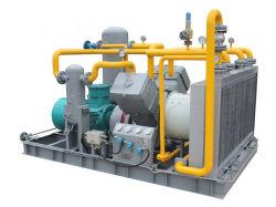 Dw-0.48/40-250 die Fabrik verkauft Ammoniak-Gas-Kompressor-ölfreien Luftverdichter-Argon-Kompressor-Erdgas-Kompressor-Wasserstoff-Kompressor