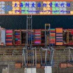 Sea Shipping LCL Service à partir de la Chine à Athènes, le Pirée, et les ports de Thessalonique en Grèce