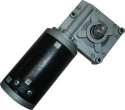 상승을%s 48V 130W PMDC 벌레 기어 모터