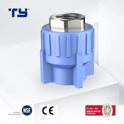 Bronze na união macho Blue PPR a Conexão do Tubo de Pressão da China as conexões de tubulação na lista de preços Fabricante