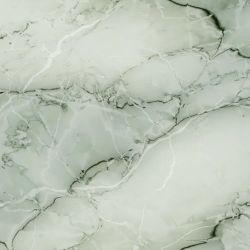 Bobinas de acero prebarnizado mármol/Primer PPGI Acero con recubrimiento de color y decoración mural Prepainted acero recubierto de zinc galvanizado