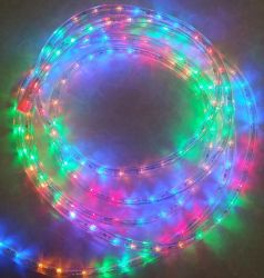 丸型LEDロープライトを飾る世界夜明け2ワイヤー屋外のクリスマス