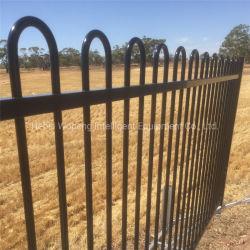 La barra vertical de acero galvanizado valla valla Piscina