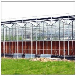 Best verkopende Galvaniseerde staalstructuur Groene Huizen Commercieel/Landbouw/Boerderij/Tuin ventilatie Multi Span Tomato PC-blad Polycarbonaat Groene huizen