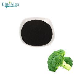 L'algue bleue de la Chine Fabricant d'extrait d'algues