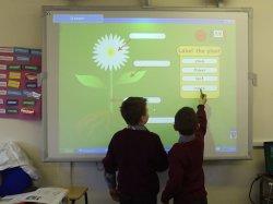 De Draagbare Interactieve Uitrustingen Whiteboard van de school met het Multi Raken van 100 Punten