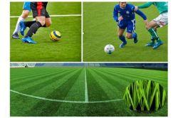 Le Gazon artificiel de fils, le tapis de gazon artificiel pour terrain de soccer sf50f8