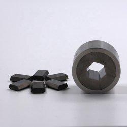 La position du moule froide carbure de tungstène, carbure de mourir de perforation personnalisé