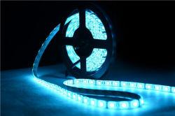 Самое лучшее освещение рождества СИД цены Ws2812b 5V цветастое
