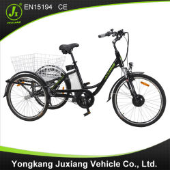 De hete Nieuwe Model Elektrische Lading Ebike Met drie wielen van de Verkoop