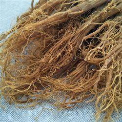 Mejora la inmunidad de hierbas de la salud de raíz Gingseng coreano PE