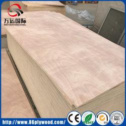 Мебель и строительство пиломатериалы коммерческих фанеры (тополь, дуб, сосновой древесины)
