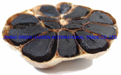الثوم الأسود الصيني، صحي من الثوم الأسود المتعمّدة الثوم العضوية الطبيعية المخمّر لصنع ملينان