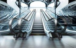 中国灯商業用ホームエレベーター階段助手席コンベア用歩行者用トラベル 移動階段歩行方法シドニー歩道 Vvvvf Escalator