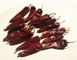 Premium Paprika New Crop gedroogde Chili/Paprika Pods