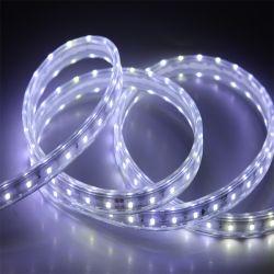 Bande LED 2835 imperméable souple 12V/24V Bande LED lumière LED sans fil Cupper