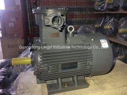 AC van de Reeks van Beide 1mt0 de Explosiebestendige Vuurvaste Elektrische Asynchrone Motor van de Inductie voor Industrie van de Olie en van het Gas