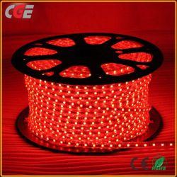 220V Strip Light LED SMD 5050 KTV mur bande de lumière blanc chaud étanche Strip Light/Blanc/bleu/vert/rouge/jaune
