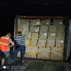 حاوية الشامبو الشحن من الصين إلى الولايات المتحدة الأمريكية/كندا