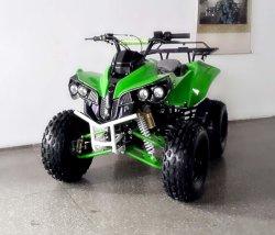 Mini Kis Sport ATV e Quad con velocità 45km/H