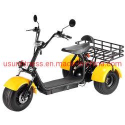 Triciclo elettrico ATV di potenza del motore di ATV di Trike fuori strada Carico per adulti