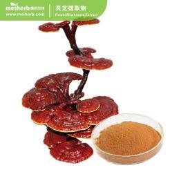 Le champignon Reishi Extract naturelles la protection de foie
