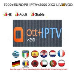Cheap Ott Plus panneau revendeur IPTV Abonnement Magcio IP TV Magnum Ott Apk Canada Soutien des chaînes HD Mag case Smart TV IPTV Sentier Libre Code plus intelligente