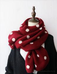 스카프 숄이 뜨개질을 한 숙녀 겨울 스카프에 의하여 점을 찍는다