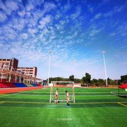 het 50mm Gekwalificeerde Kunstmatige Gras van Astro van het Gras van het Gras van de Tapijten van de Voetbal Synthetische