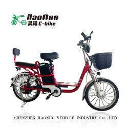 20*2.125インチのタイヤ48V 350watt販売のためのブラシレスモーター頑丈な貨物電気バイク