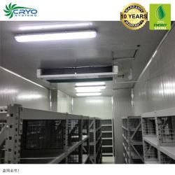 Camminata di conservazione frigorifera della carne degli importatori della verdura fresca di l'altezza del magazzino frigorifero dell'Australia del congelatore