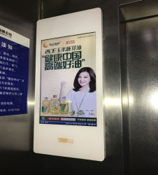 Digitale Signage van de lift Vertoning Signage van 22 Duim de Binnen Digitale Vertoning LCD van de Reclame