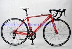 700c estrada liga de alumínio aluguer de bicicletas de corrida (FP-RB-09)