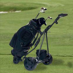 Commerce de gros chariot de golf électrique de commande à distance 3 roue (DG12150-D)