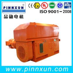 Hochspg-Wicklungs-Motor für Pumpen-Gebrauch