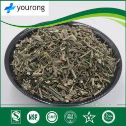 Andrómeda hierbas chinas con el efecto de la remoción de calor y la desintoxicación