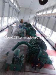 El agua de la turbina hidráulica turbina Pelton turbina Mini
