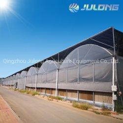 Multi-Span Tunnel commerciale agricole à faible coût du film plastique pour les légumes de serre Lettcue