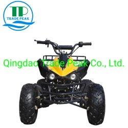 Сертификация CE 125 см четыре Уилер ATV Bike Quad