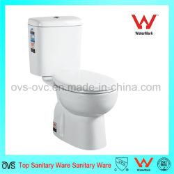 Deux morceau de la porcelaine sanitaire de l'eau de toilette en céramique de placard