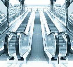 실내 상업적인 경제적인 옥외 공중 전송자 엘리베이터 에스컬레이터 (XNFT-001)