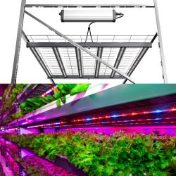 China Shenzhen Directa de Fábrica de 600W de amplio espectro de luz LED plegable crecer (real 650W)