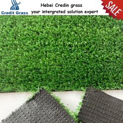 10 مم كل الأحوال الحوضالمناظر الطبيعية العشب الأخضر العشبي مساحة داخلية خارجية العشب الصناعي البذرة الصناعية الحصيرة الصناعية