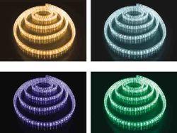A conduit à plat à 4 fils de la corde Rainbow lumière