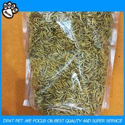 Commerce de gros vers de farine séchés de haute qualité des aliments pour animaux
